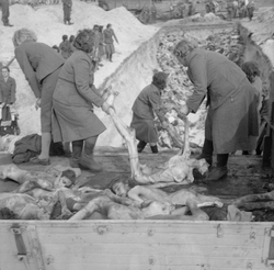 SS female camp guards remove prisoners' bodies from lorries and carry them to a mass grave, inside the German Bergen-Belsen concentration camp, 1945