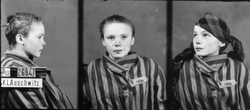 Prisoner identity photograph taken by the German SS of a fourteen-year-old Polish girl, deported as forced labour to Auschwitz, December 1942