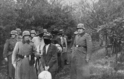 Polish civilians wearing blindfolds photographed just before their execution by German soldiers in                                 Palmiry forest                                , 1940