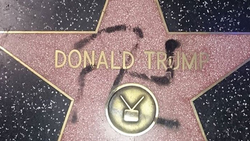 Someone messed with Donald's Star