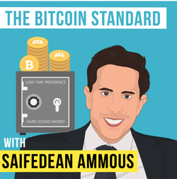Caricature ofSaifedean Ammous as part of a podcast regarding his book.