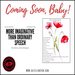 Banners at the Boutique Domain: More Imaginative Than Ordinary Speech (Poetry)