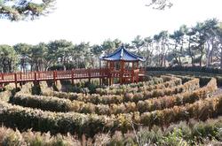 미로원 wiki, 미로원 history, 미로원 news