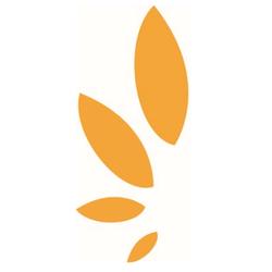 Golden Seeds wiki, Golden Seeds review, Golden Seeds history, Golden Seeds news