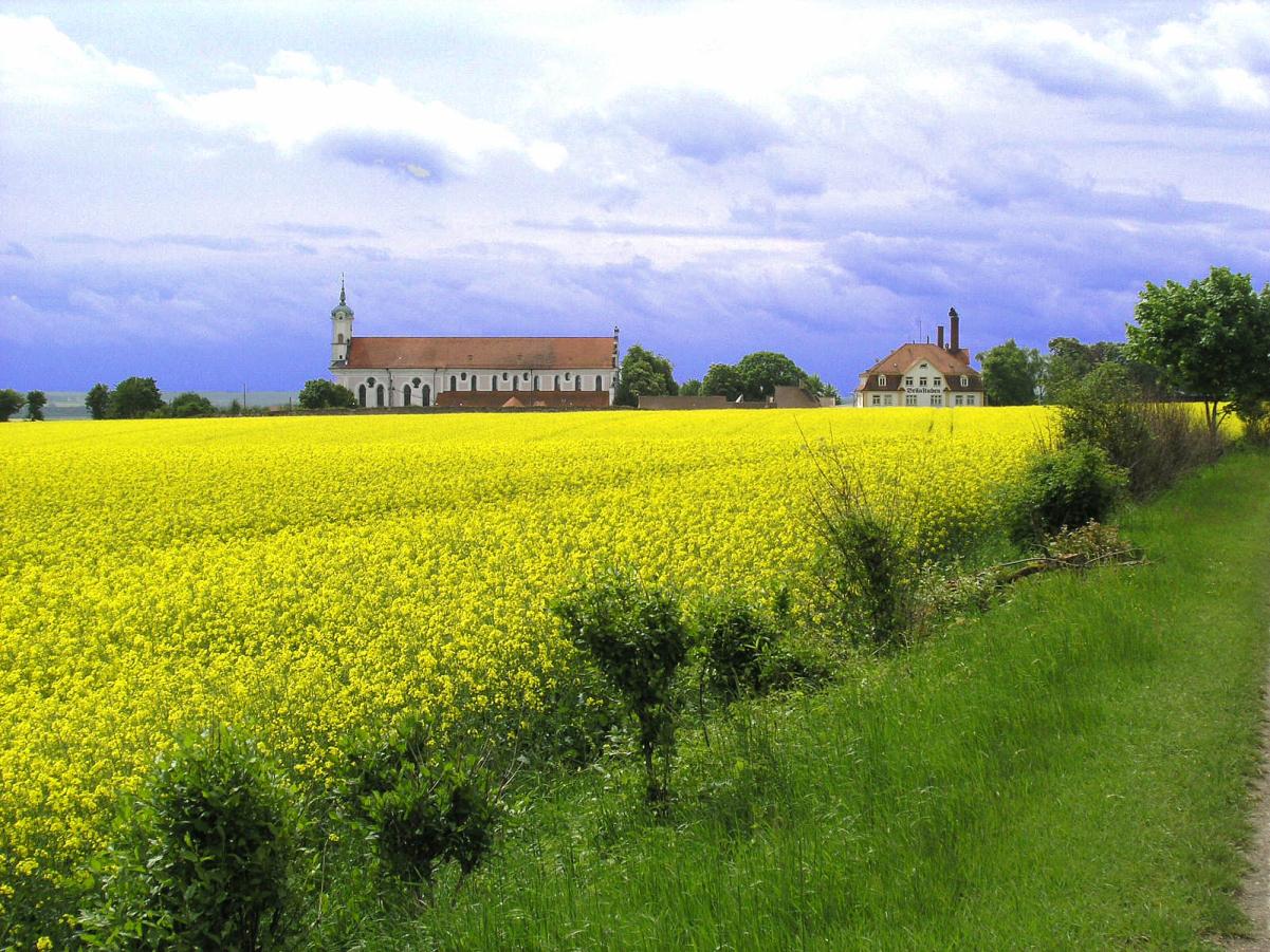 The battlefield in front of the monastery of Elchingen