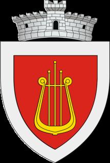 Ciprian Porumbescu, Suceava