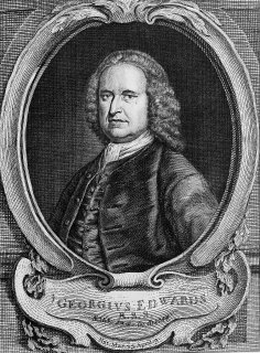 George Edwards (naturalist)