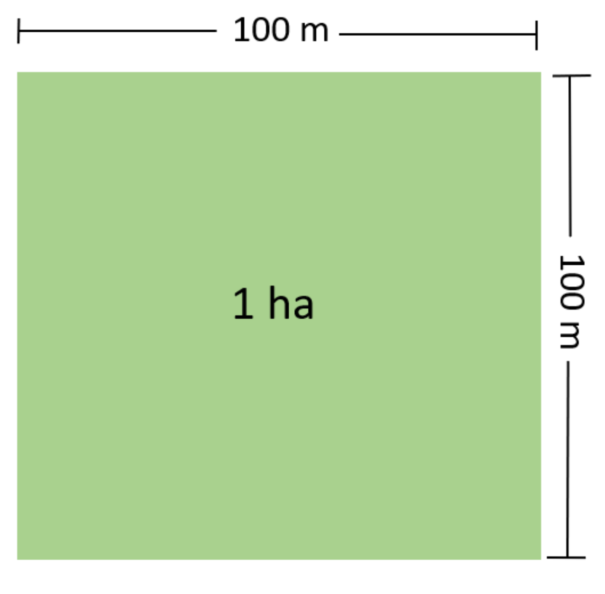 1 hectare is equal to how many metres