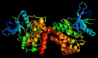 Janus kinase 2