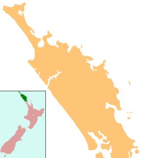 Kauri Museum