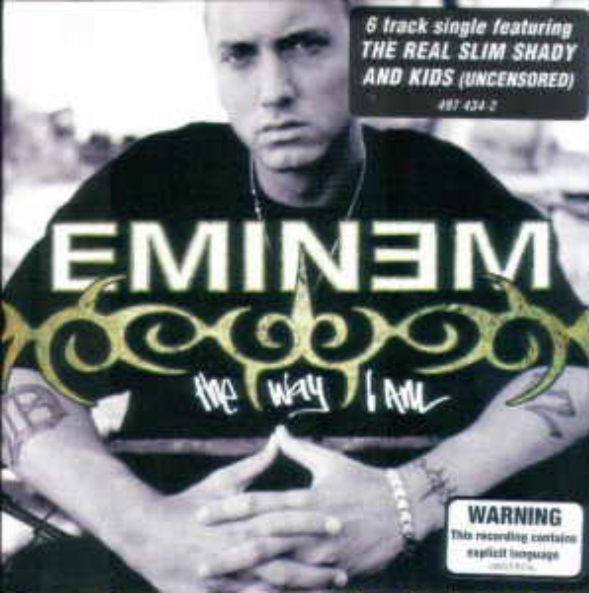 The Way I Am (Eminem Song) Wiki